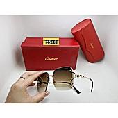 Cartier Sunglasses #455043